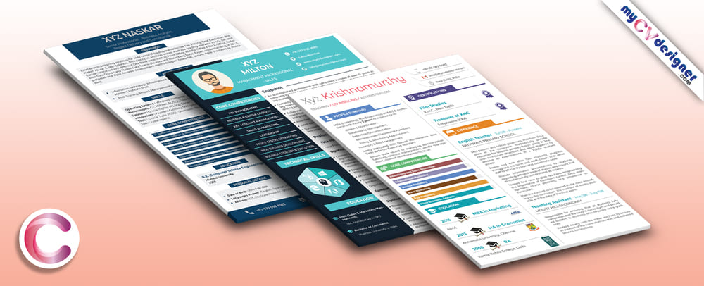 Visual CV/Resume Sample Template