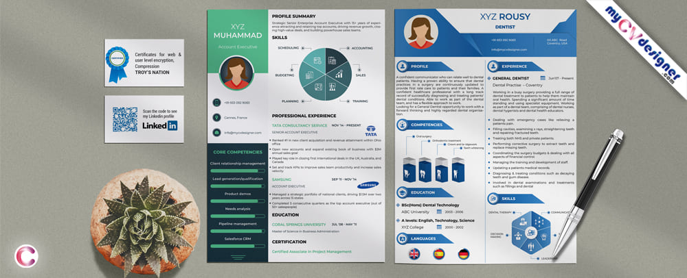 Visual resume, Visual CV Templates