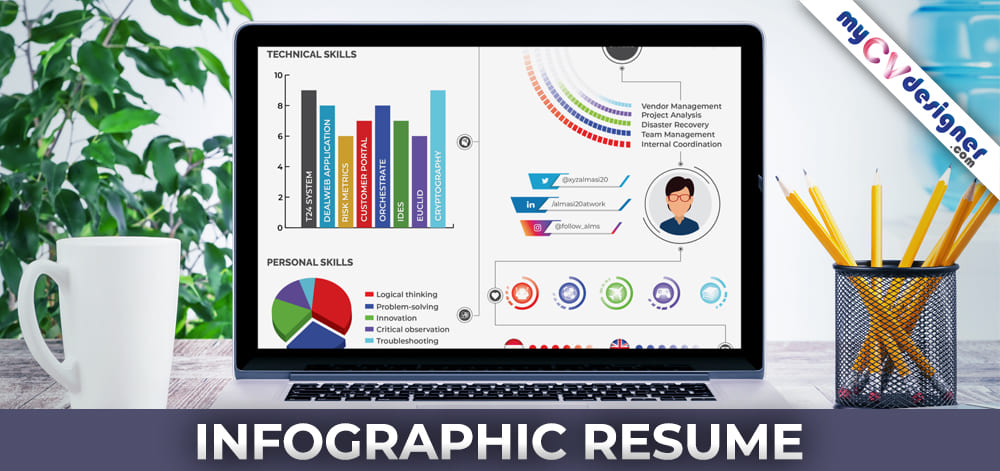 What is Infographic CV? What is Infographic Resume? Best Infographic Resume, Professional Resume Formats: