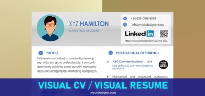 What is Visual CV? What is Visual Resume? Best Visual Resume, Professional Resume Formats: