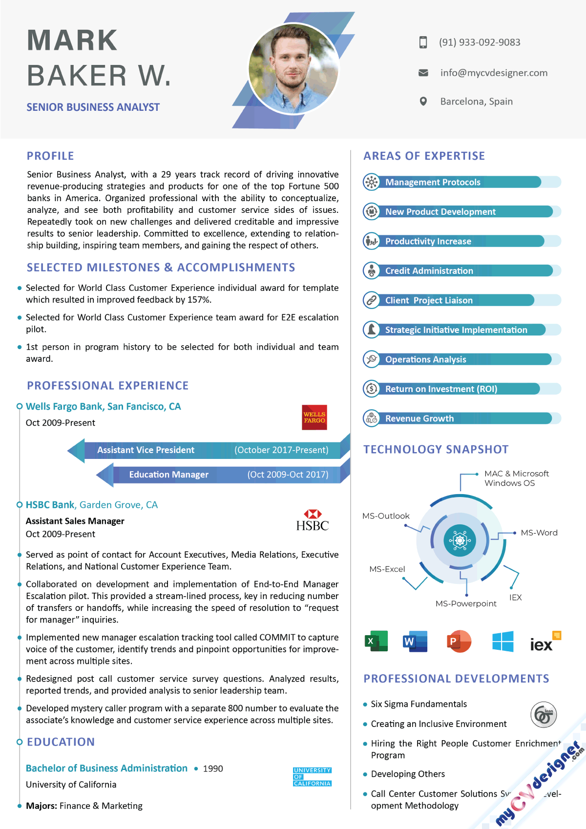 Business Analyst Infographic Resume Example