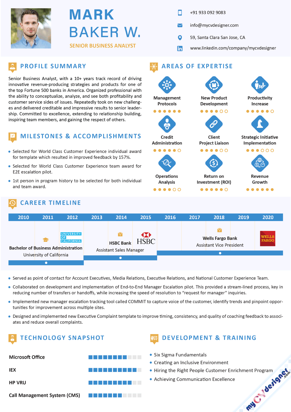 Business Analyst Infographic Resume Sample