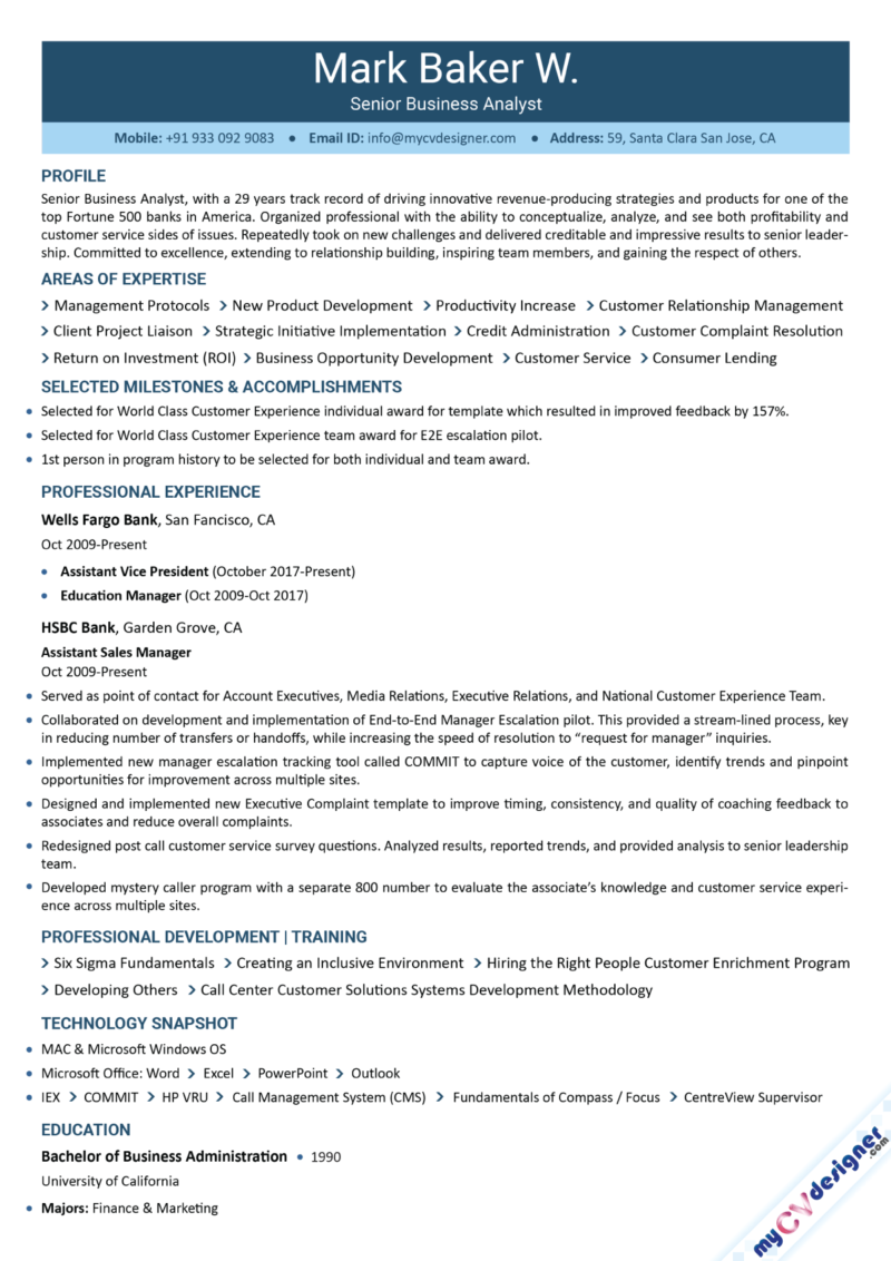Business Analyst Text Resume Sample