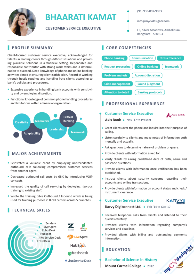Customer Service Executive Infographic Resume Example