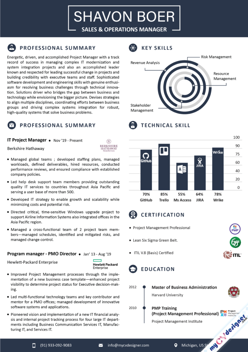 Project Manager Program Manager Infographic Resume Template