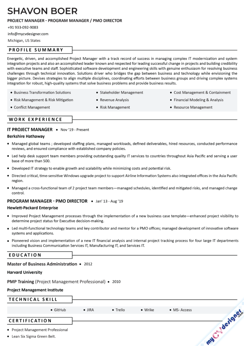 Project Manager Program Manager Text Resume Example