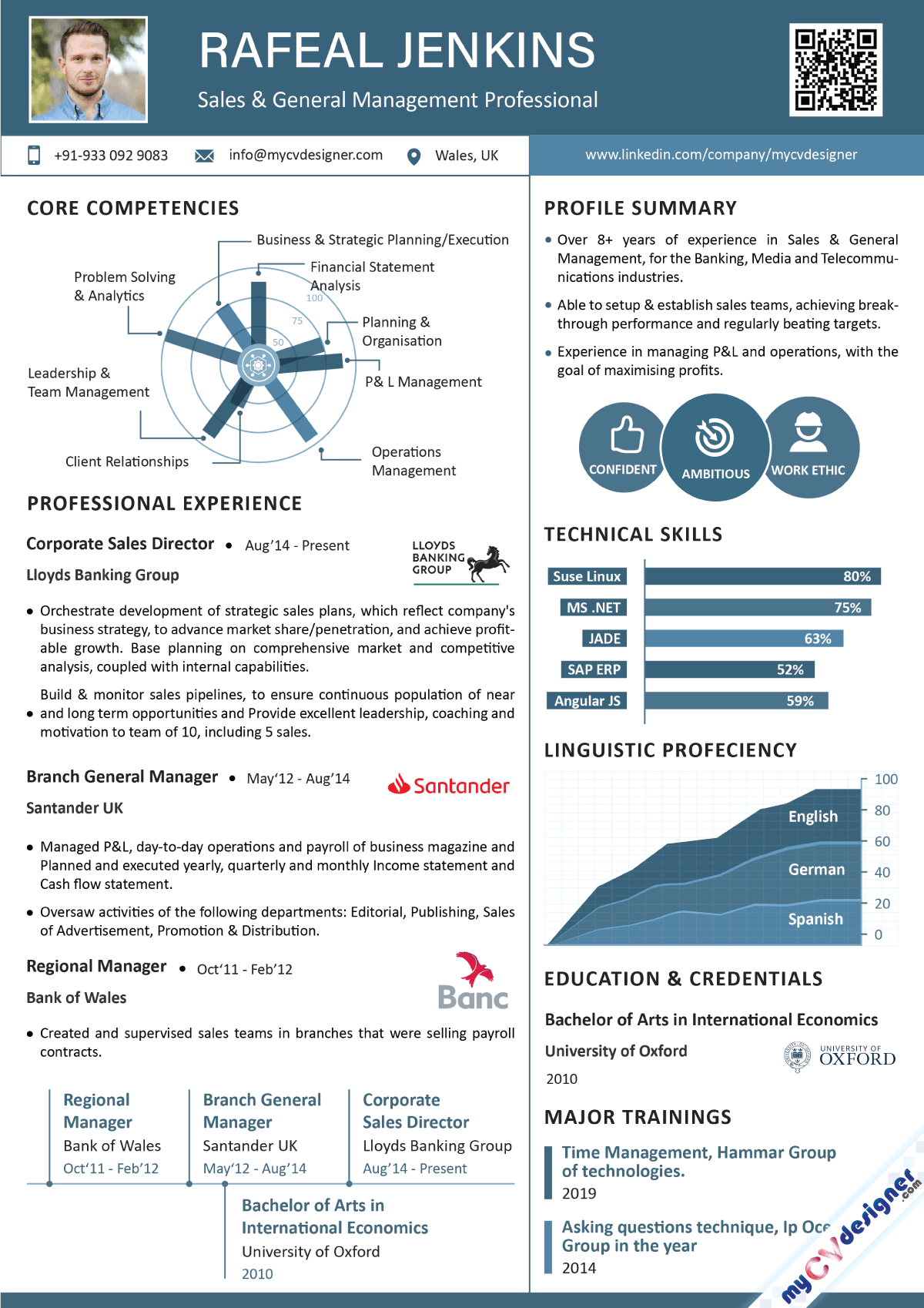 Sales and General Management Professional Infographic Resume Template