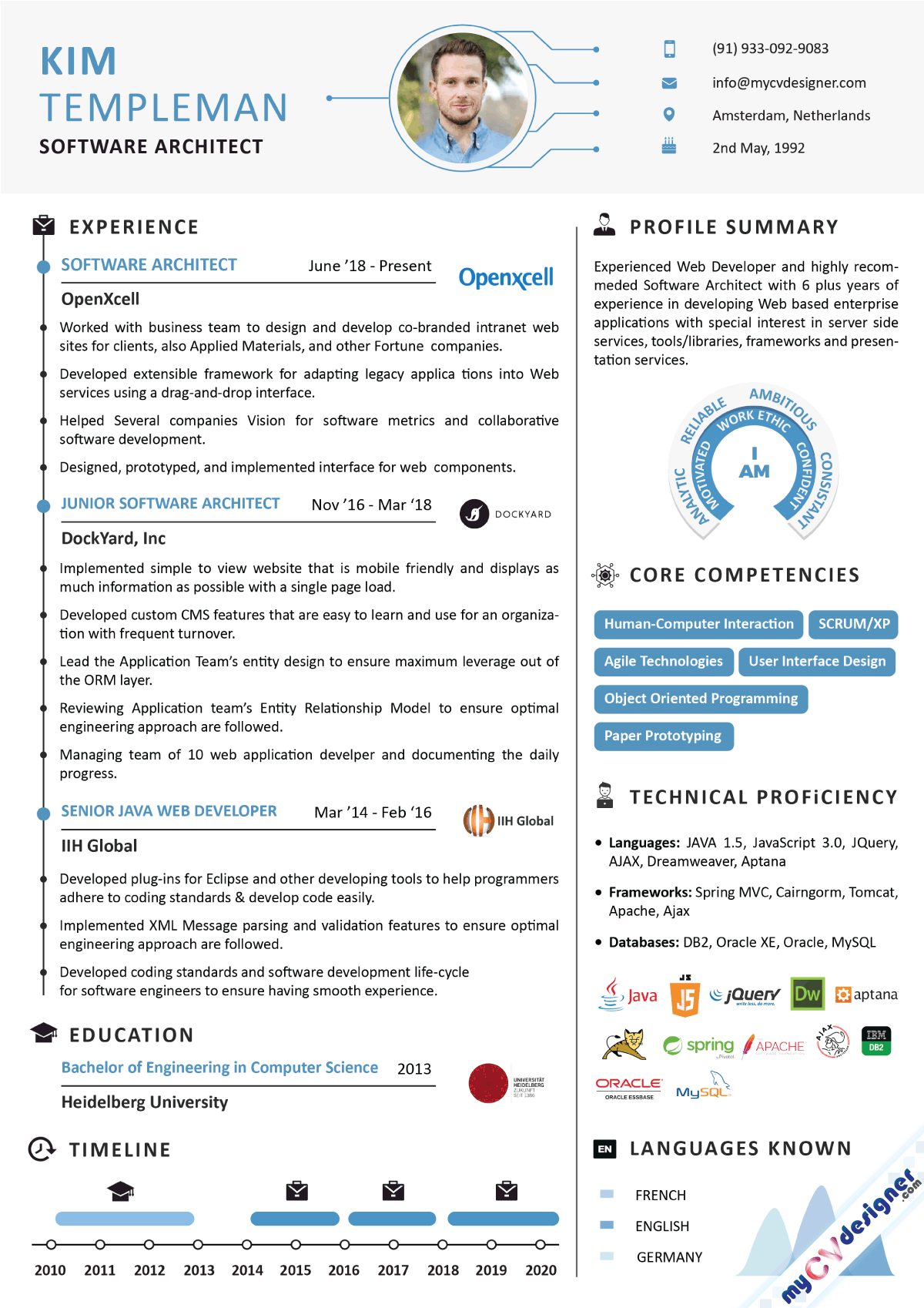 Software Architect Infographic Resume Sample