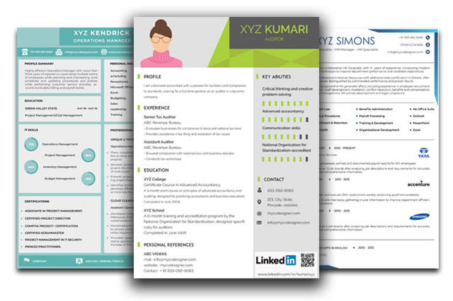 visual resume templates